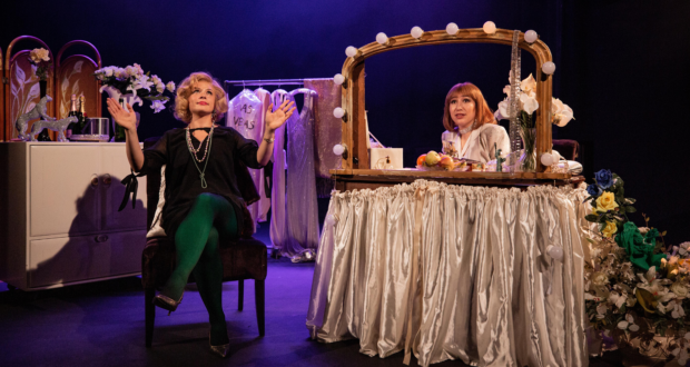review image for The Funny Girls